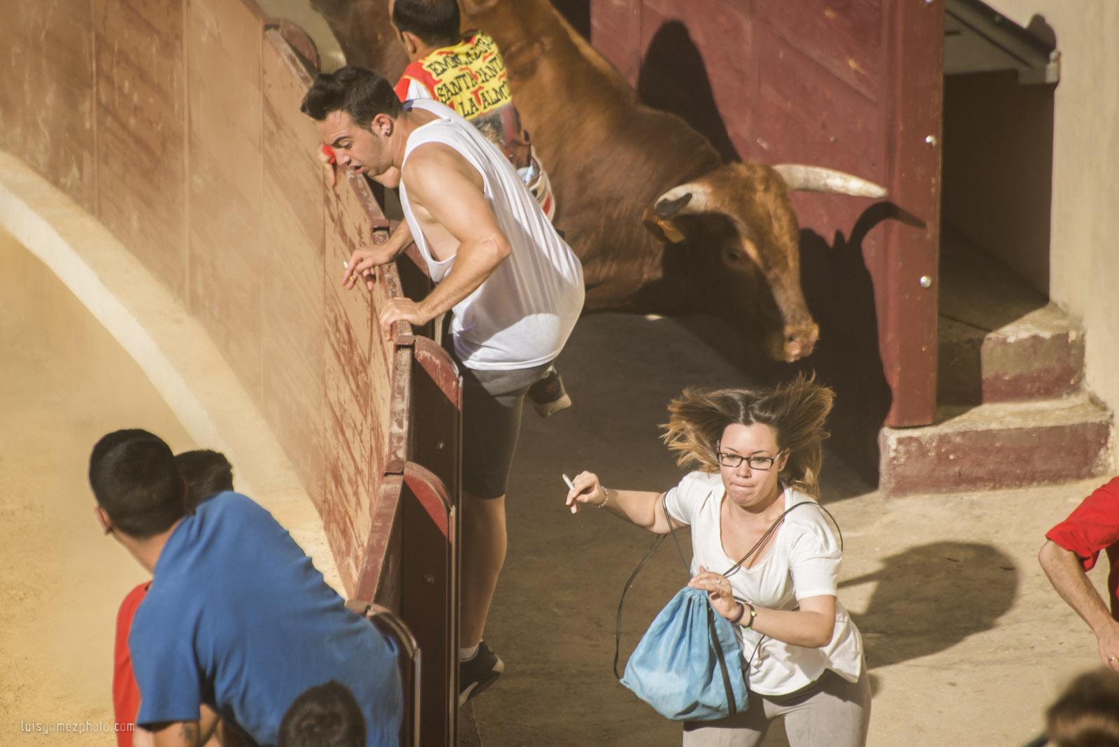 When bull jumps